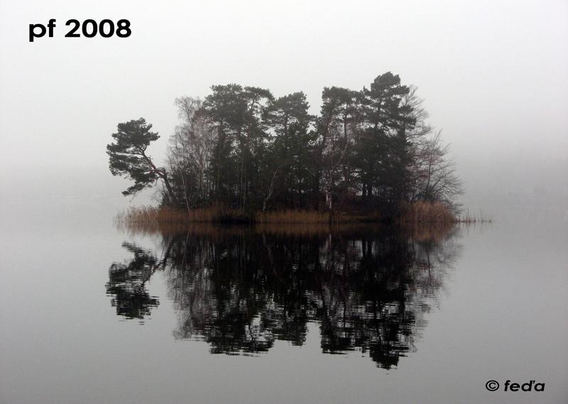 alfa_pf_2008